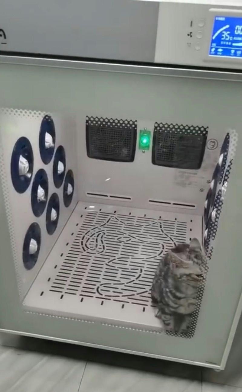 猫舍 欧科达宠物烘干箱