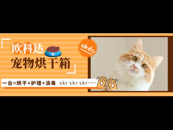 哇!一台宠物烘干箱=烘干+消毒+护理,简直太skr~