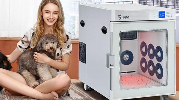 欧科达宠物护理室:狗狗腹泻有哪些应急措施?