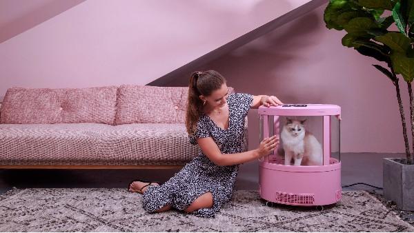 巨巨巨好用的宠物烘干箱,40分钟吹干毛发,买了不后悔!