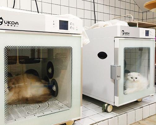 欧科达UKDA 全自动宠物烘干护理机