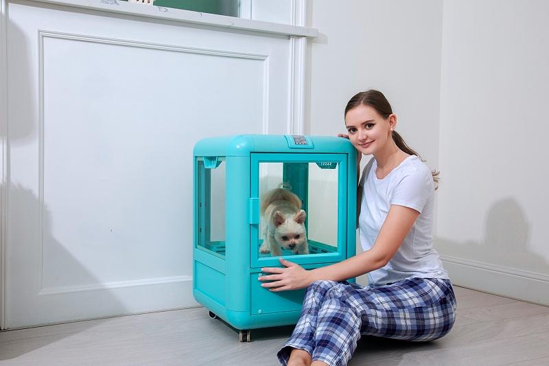 """静音效果一流的""""宠物烘干机"""",胆小的狗狗也不害怕!"""