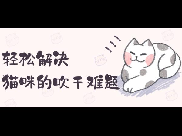 【宠物用品】一台宠物烘干机,轻松解决猫咪的吹干难题!
