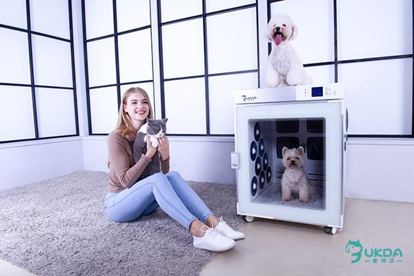 宠物烘干机和传统宠物干燥产品的区别