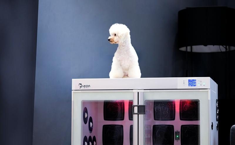 欧科达全自动宠物烘干机