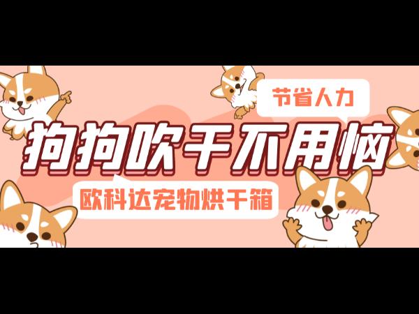 """欧科达宠物烘干箱丨有了这款宠物用品,狗狗""""吹干""""不用恼!"""