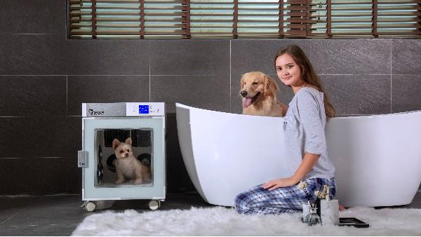 风筒噪声太大?狗狗吓到应急...快看看这款宠物烘干机吧!