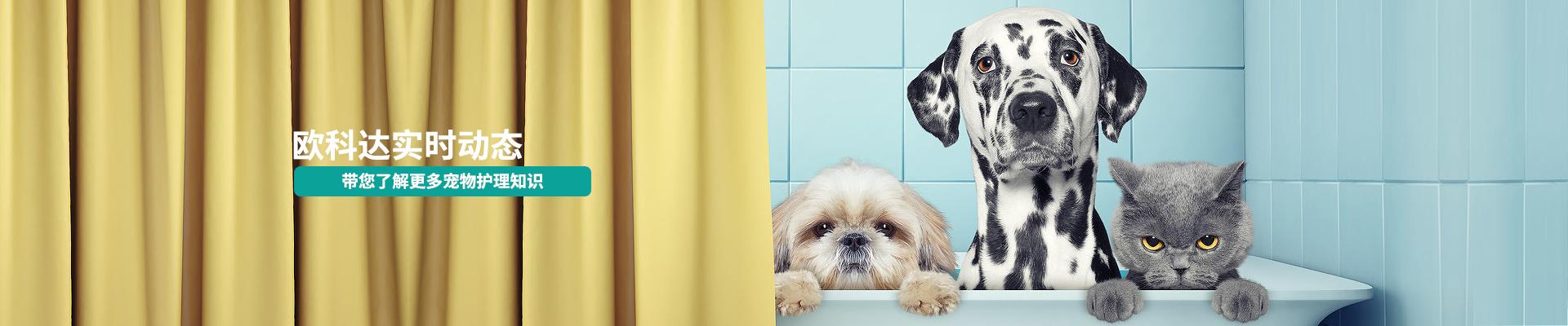 欧科达-带您了解更多宠物护理知识