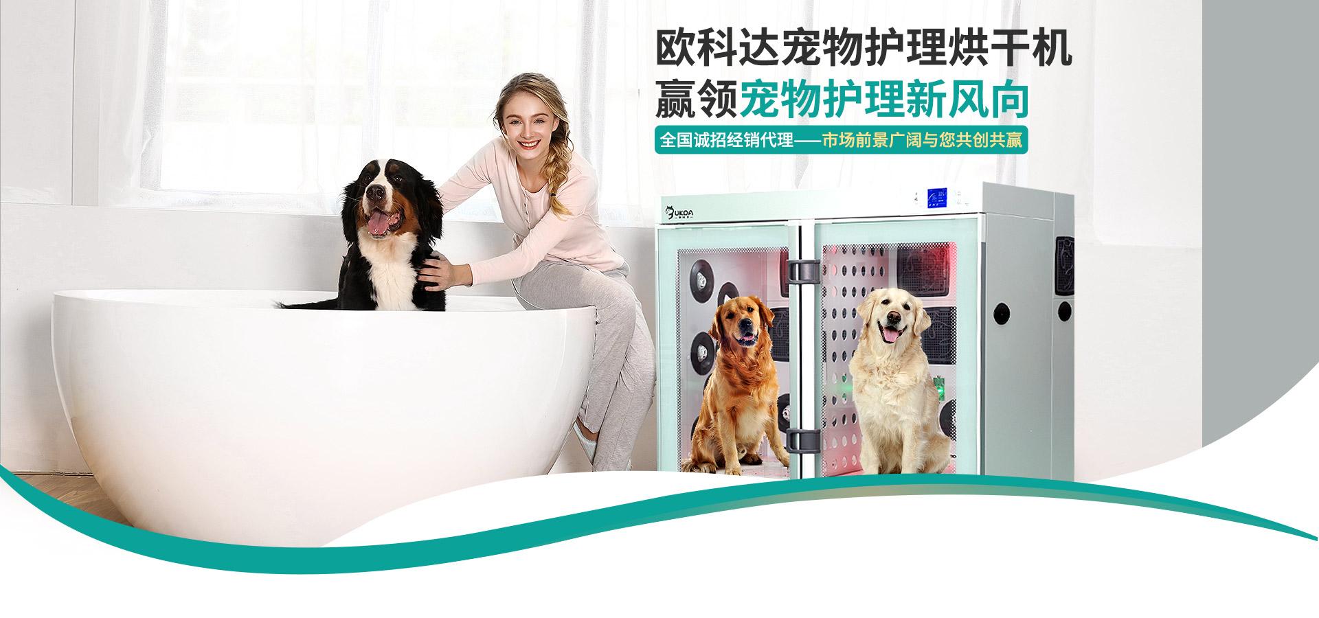 欧科达-欧科达宠物护理烘干机