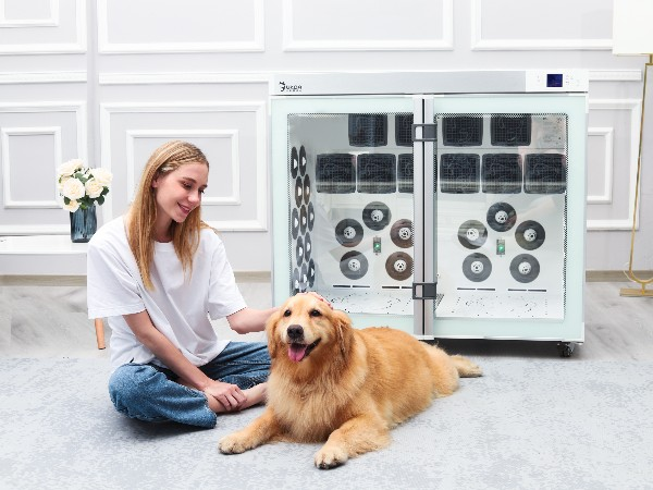 全自动宠物烘干箱!不耗时不费力、舒适静音,狗狗不害怕!