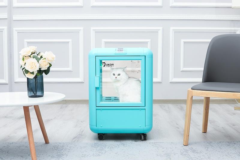 吹水机换成它,用一次爱一次,猫咪再也不害怕吹毛了!