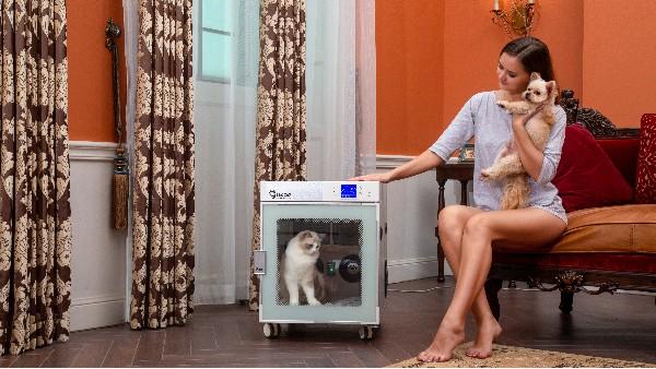 宠物烘干箱哪个牌子好?看这儿!国家3C认证,安全有保障!