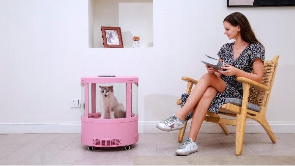 """这一款""""宠物烘干机""""太上头了!猫咪一洗完澡就想钻进去!"""