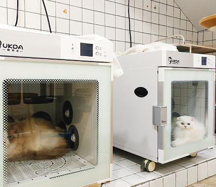 欧科达宠物烘干机 猫舍