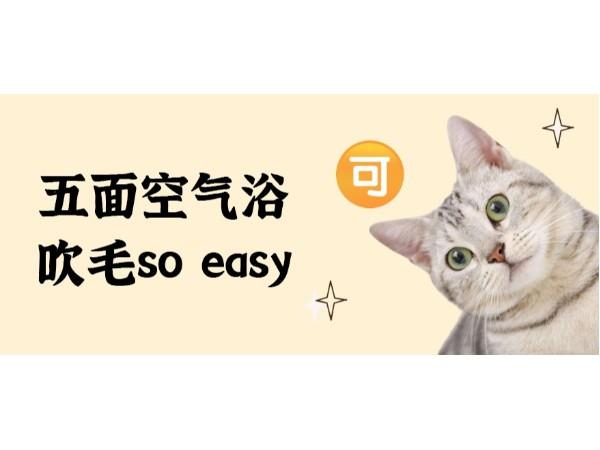 欧科达宠物烘干机丨五面出风,吹毛so easy