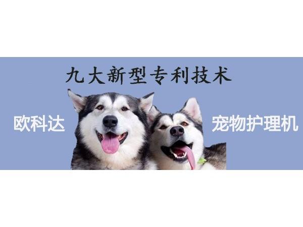 宠物护理,就选欧科达!