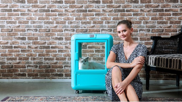 欧科达丨冬天洗猫,少不了一台猫咪烘干箱!