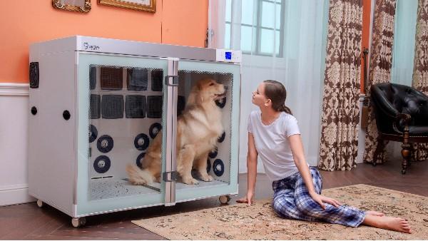 干燥毛发,是吹水机就可!烘干护理,欧科达宠物烘干机才行!