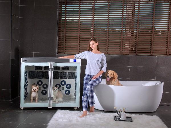 给宠物吹毛麻烦吗?欧科达:不!宠物烘干机帮你解决