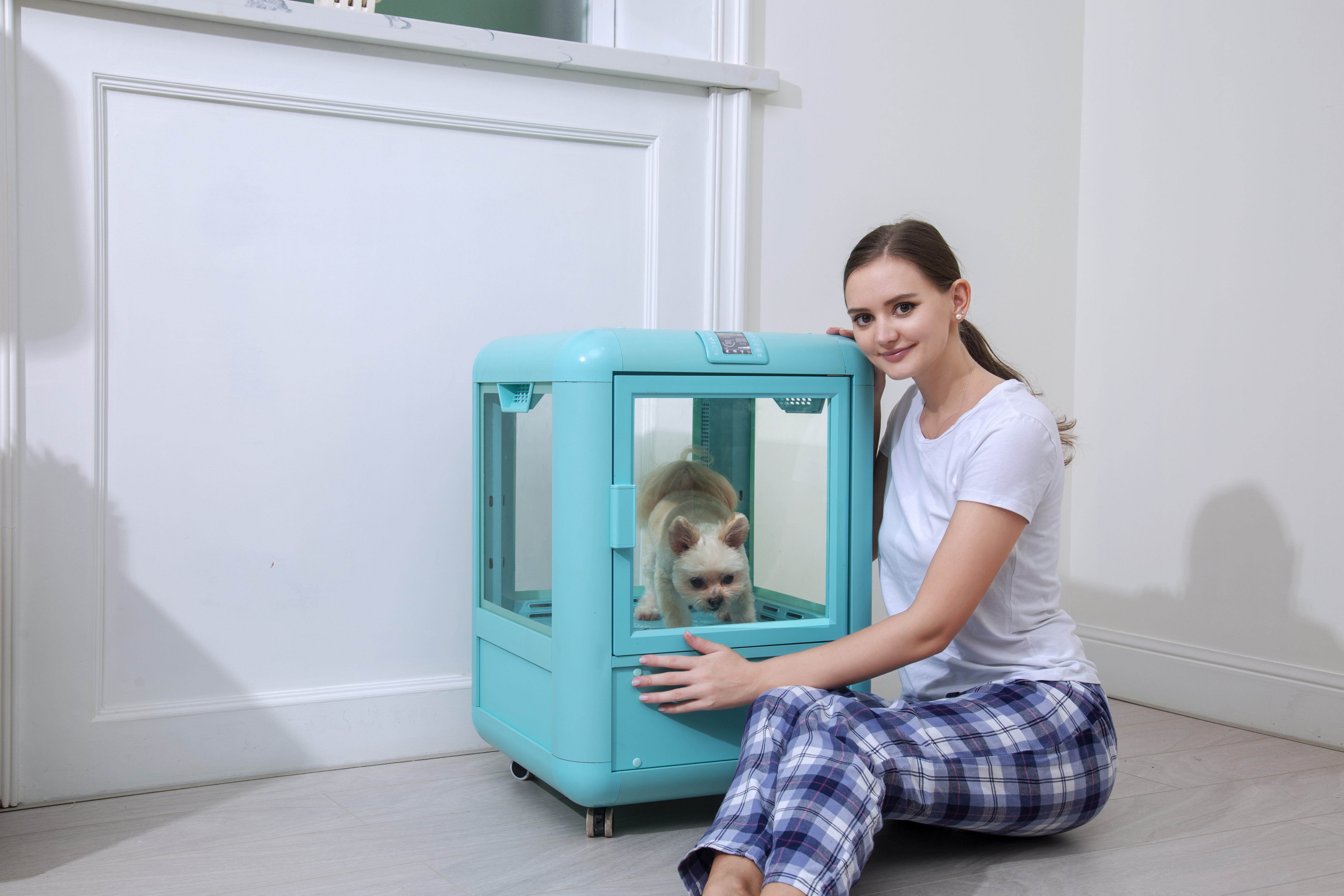 宠物用品市场广阔,诚邀您加入欧科达宠物烘干箱代理商!