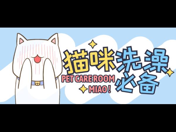 """适合猫舍的""""宠物烘干箱"""",静音送暖风,猫咪洗澡必备!"""