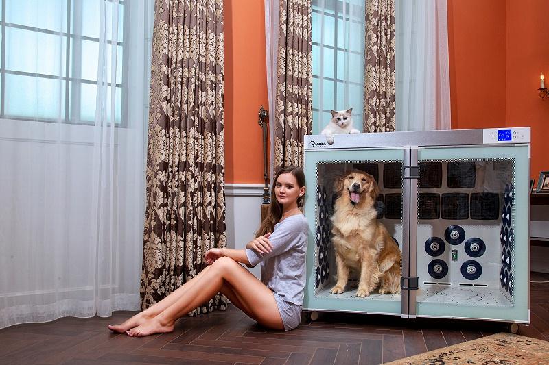 宠物行业项目千千万,我为何选择欧科达宠物烘干机?