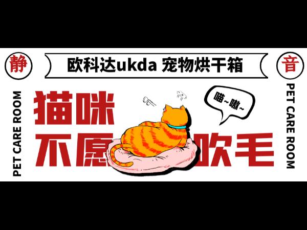 欧科达宠物烘干箱丨猫咪不愿吹毛?不妨试试它,静音!舒适!