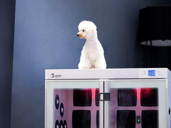 5面空气浴、6层安全保障——欧科达宠物烘干机