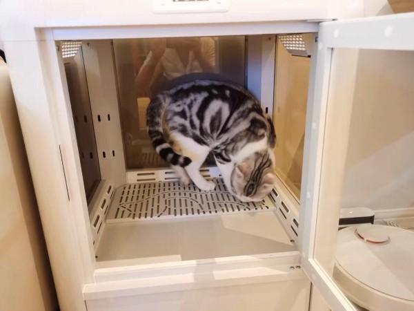 宠物烘干箱丨ukda k5真的可,铲屎官们冲啊!!