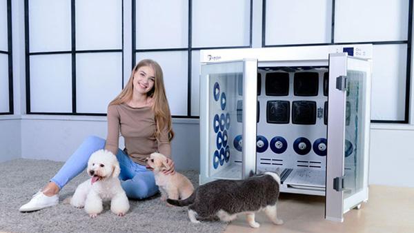 宠物烘干箱这么用,你家宠物洗澡烘干才放心!
