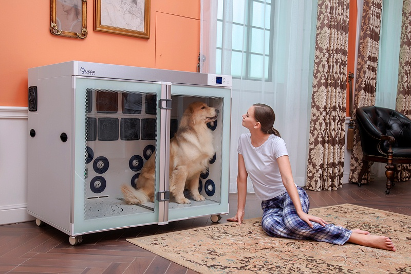 解放双手!宠物烘干箱哪个牌子好?