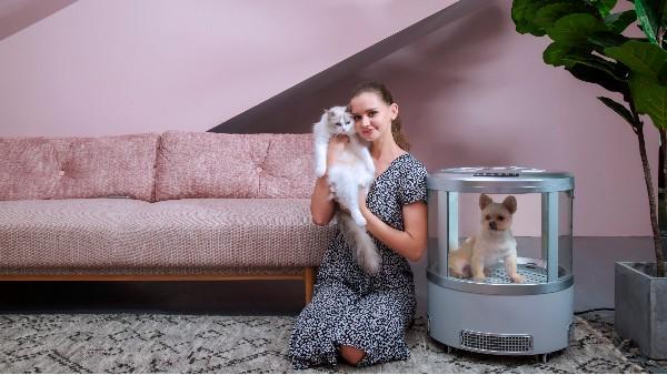 """""""主子""""洗澡就得去宠物店?欧科达宠物烘干机:在家就行,帮你吹!"""