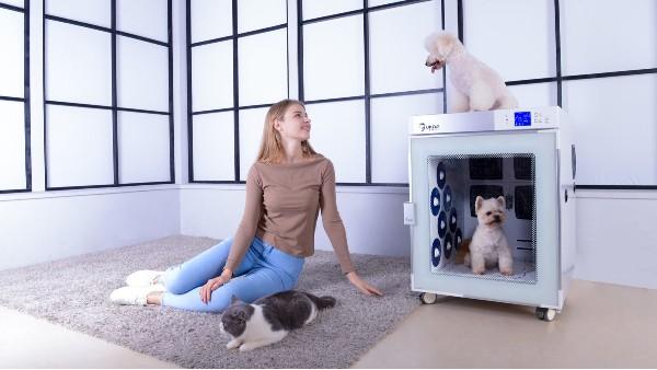警惕!这4种狗狗不适合去宠物店洗澡,尤其是第3种!!