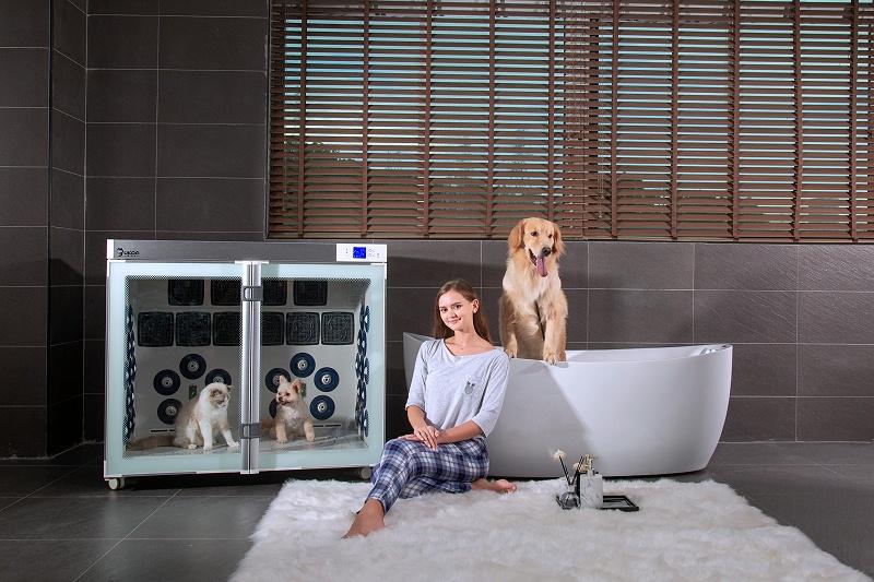 天天洗猫洗狗,一款高效便捷、节能静音的宠物烘干箱必不可少!