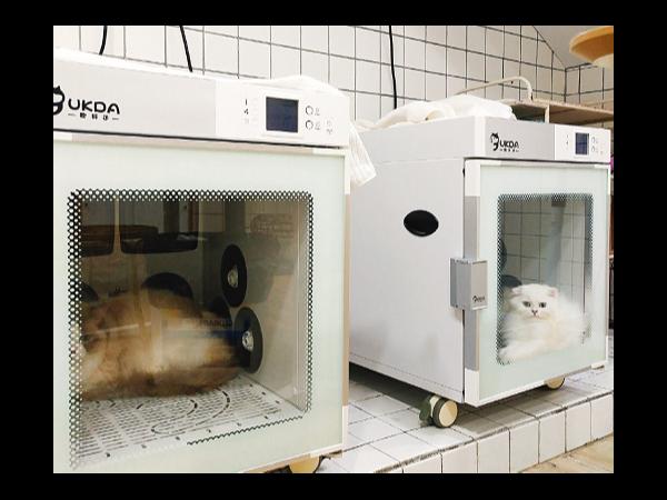 「 欧科达UKDA宠物烘干机 」让猫咪爱上烘干~