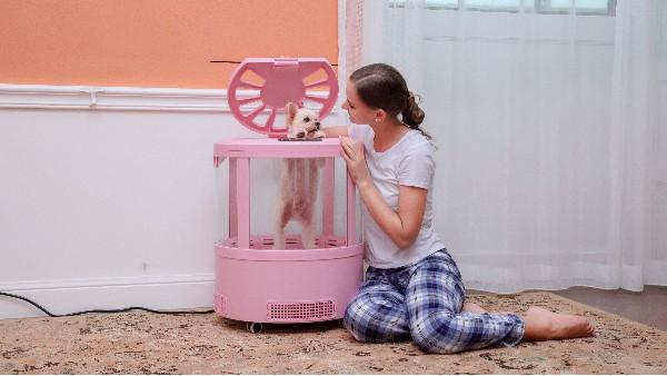 欧科达又双出新品了!这台宠物烘干机,有点不一样哟!