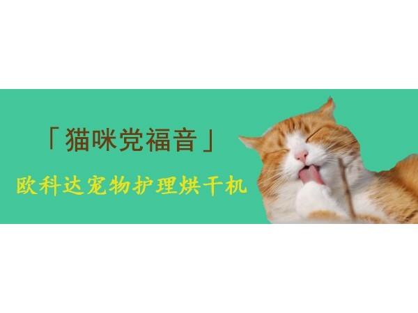 欧科达宠物护理烘干机,猫咪们党福音!