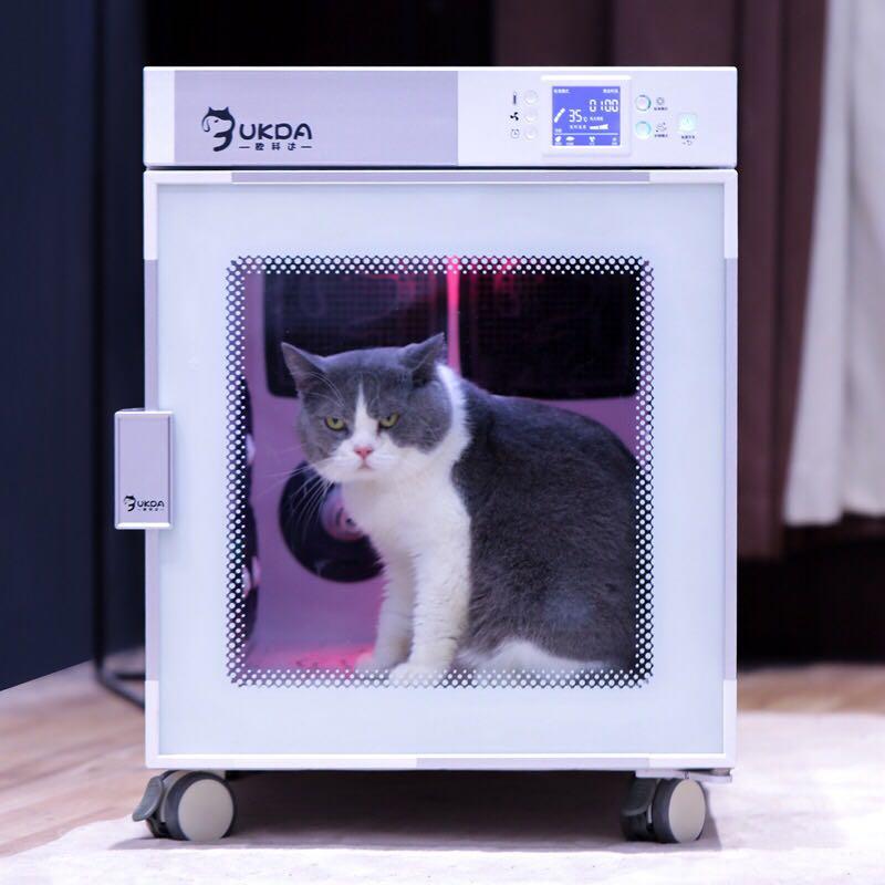 猫咪 欧科达宠物烘干机