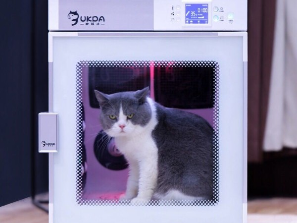 欧科达宠物烘干机丨给宠物吹毛、护理的好帮手