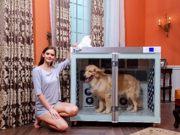 为宠物提供舒适干燥的环境——欧科达宠物烘干机